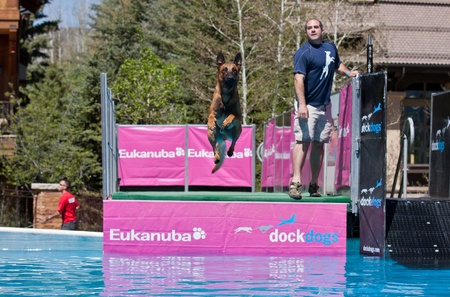 retrieve: Vail, Colorado, USA - June 3rd 2011 - The Teva Mountain Games - Dockdogs : Big air Wave - Dogs have to do the longest jump in the water to retrieve their favorite toy