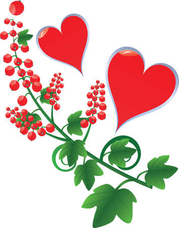 hearts with red currant Illustration