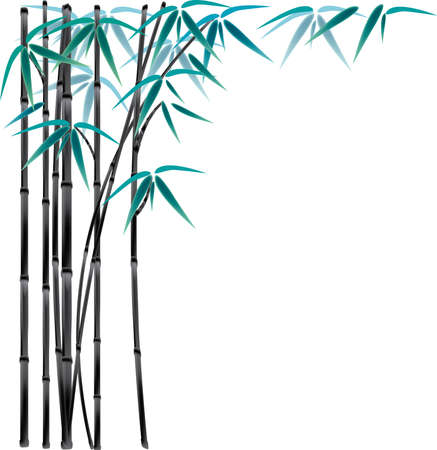 black bamboo Vector