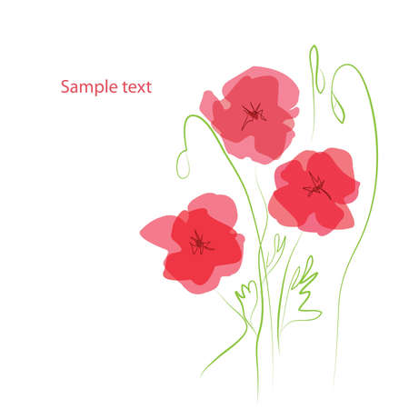 translucent red: Romantic Flower Background with poppies