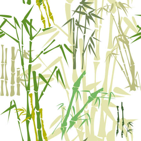pattern with green bamboo  Vector