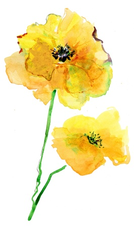 picture of two yelloy flowers Stock Photo