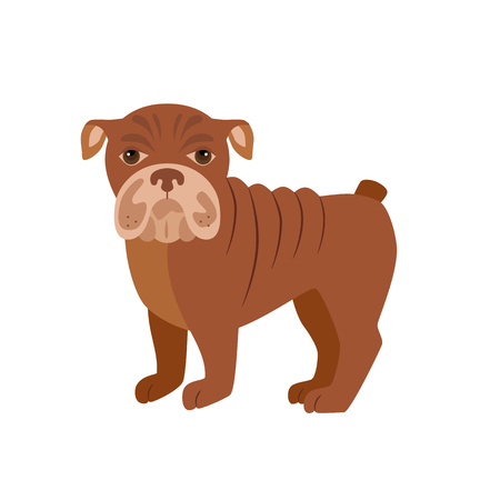 doggie: Flat bulldog pet illustration. Standing cute dog vector. Flat dog animal pet vector icon. Home cartoon standing bulldog in flat style. Dog colorful silhouette isolated on white background