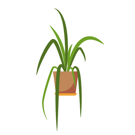 plant pot: Potted plant isolated. Vector flat plant pot illustration. Concept of flat flower pot. Colorful plant in pot for your design. Home flower pot icon