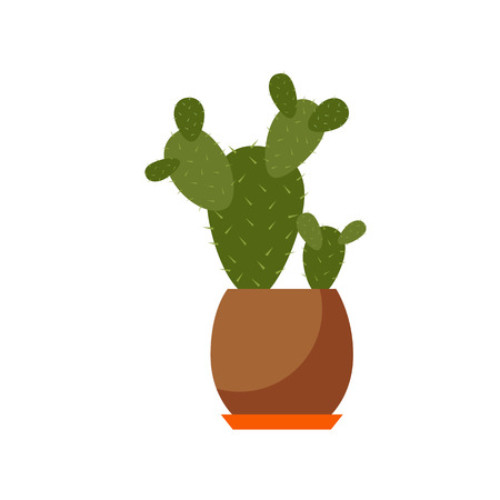 plant pot: Indoor plant isolated flat Indoor plant pot illustration. Concept of flat home plant pot. Colorful Indoor plant in pot for your design. Home plant icon Illustration