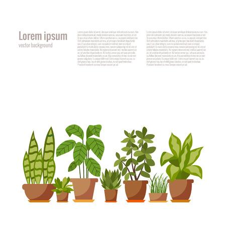 Set van kamerplant geïsoleerd flat kamerplant pot illustratie. Het verzamelen van flat huis installatie pot. Stock Illustratie