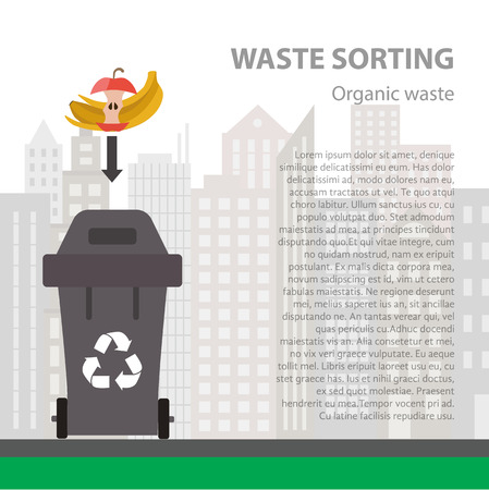 disposal: Organic waste sorting flat concept.  Vector illustration of organic waste. Organic waste recycling categories and garbage disposal.  Organic waste types sorting management .