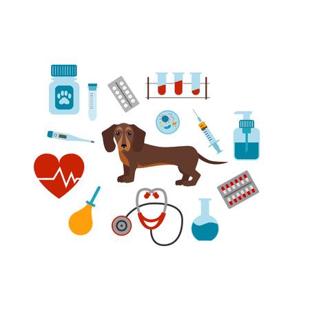 Koncepcja kreskówki Vet. Wektor weterynaryjnego psa ilustracji. Pojęcie płaskich ikon klinicznych weterynaryjnych. Kolorowe pojęcie medycyny weterynaryjnej dla swojego projektu. Weterynaryjny psów rasy jamnik izolowane. Ilustracje wektorowe