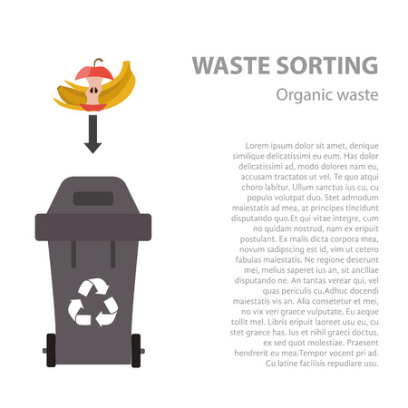 categories: Organic waste sorting flat concept.  Vector illustration of organic waste. Organic waste recycling categories and garbage disposal.  Organic waste types sorting management .
