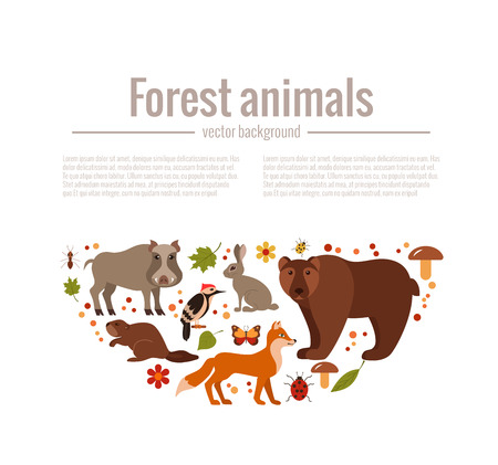 Zoo Collection Of Fox Wolf Bear Moose Hedgehog Reindeer Owl Boar Raccoon Woodpecker Hare All Elements Are Isolated