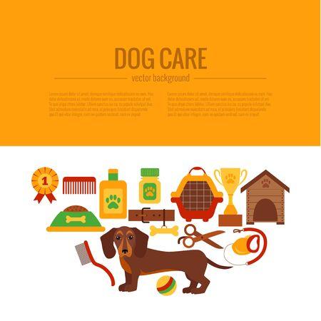 dachshund: Dachshund care infographic concept