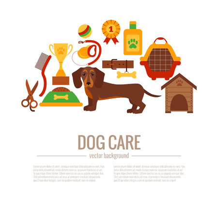 Dachshund care infographic concept with dog grooming isolated elements. Puppy training colorful cartoon poster vector illustration template for web sites, pet shops.