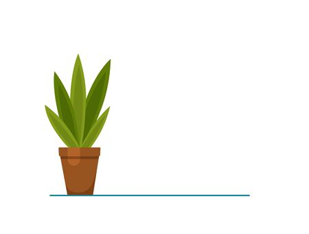 House plant isolated. Vector flat house plant pot illustration