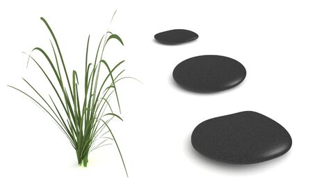 digital render of three black pebbles and a grass plant isolated on white Stock Photo