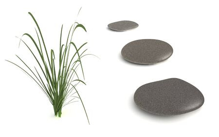 digital render of three grey pebbles and a grass plant isolated on white