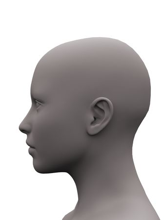 3d render of a gray female head