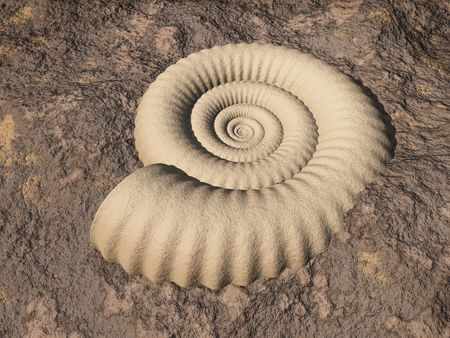 render of a fractal ammonite embedded in rock