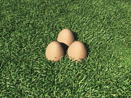 3d render of 3 eggs lying on grass