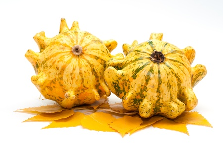 cor: Decorative pumpkins whith yellow leaves
