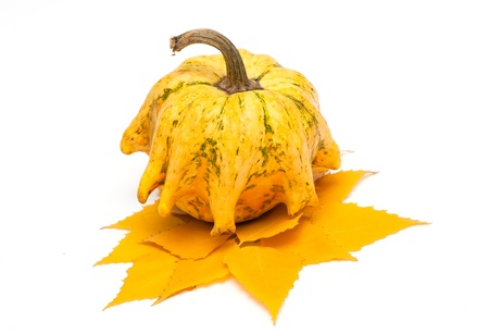 cor: Decorative pumpkin whith yellow leaves Stock Photo