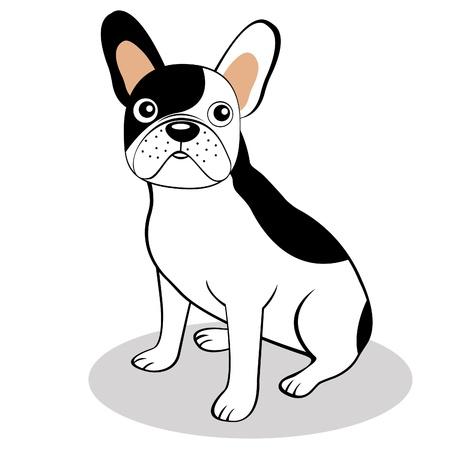 bulldog: Bulldog franc�s Vectores