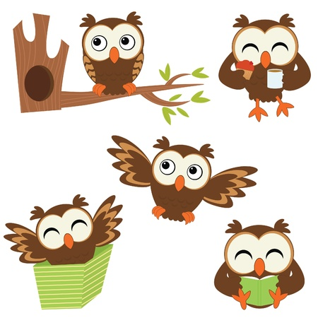 owl cartoon: Cute little owls