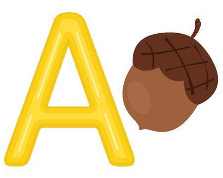 A is for acorn Stock Vector - 13735314