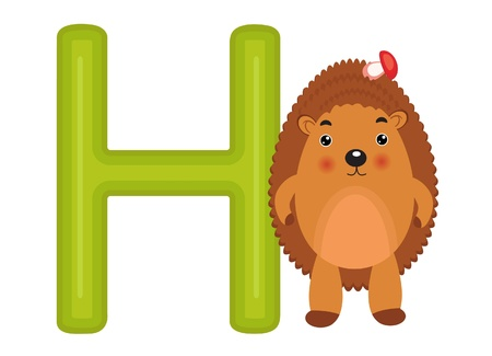 H is for hedgehog Vector