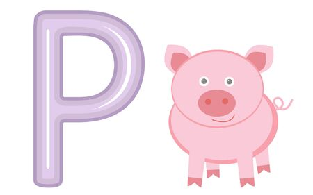 Vector illustration P is for pig Vector