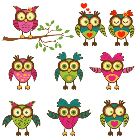 Cute colorful owls collection. Vector illustration.