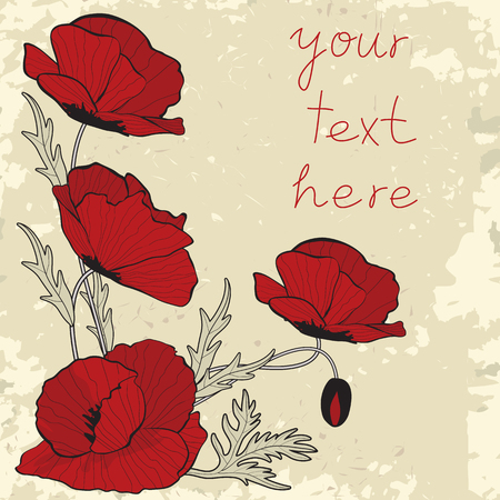 Vintage style card template with poppy flowers Vector