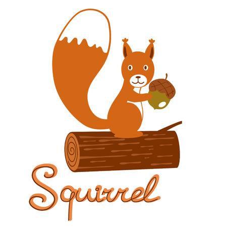 Illustration of little squirrel holding acorn