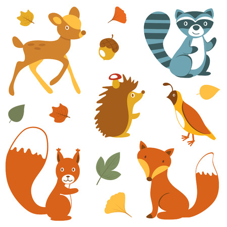 animal: Cute woodland animals collection