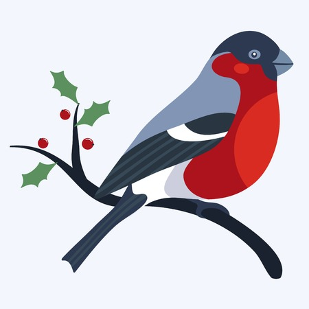 bullfinch: Bullfinch sitting on a brach with holly leafs Illustration