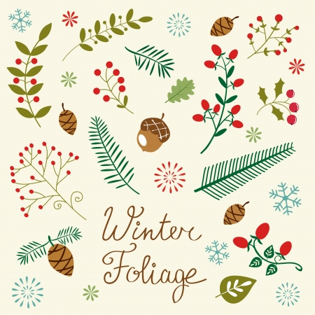 cartoon christmas tree: An elegant winter foliage set Illustration