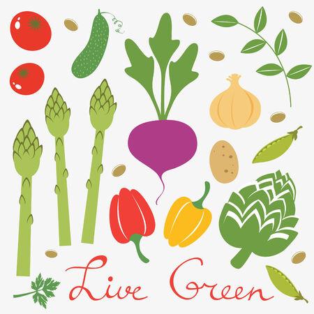 design design elemnt: Colorful set of fresh vegetables Illustration