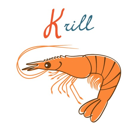 Illustration of K is for Krill. Vector format Ilustração