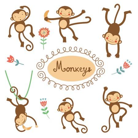 Nette lustige Affen bunte Sammlung. Vektor-Illustration Standard-Bild - 34901105