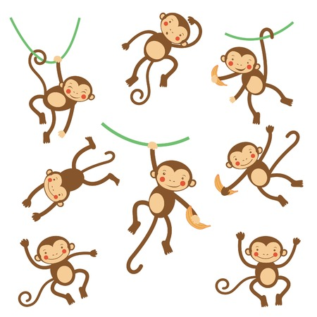mono caricatura: Monos divertidos lindos colorida colecci�n. ilustraci�n vectorial