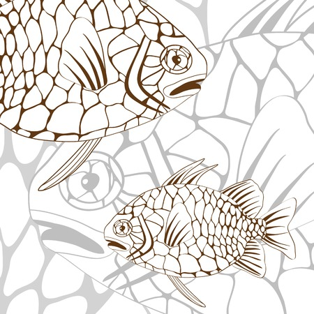 pinecone: Illustration of exotic pinecone fish  Illustration