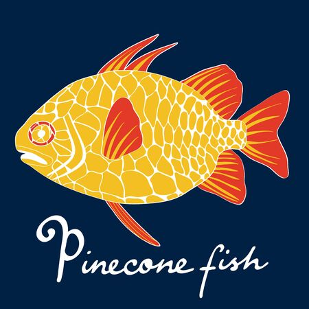 pinecone: A colorful illustration of exotic pinecone fish in vector format