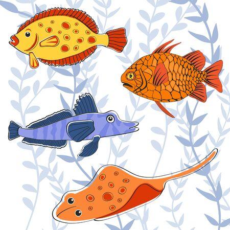 manta: Colorful fishes
