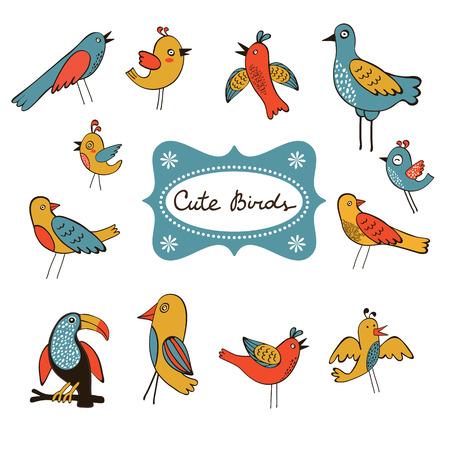 aves caricatura: Linda colección de pájaros divertidos. ilustración vectorial Vectores
