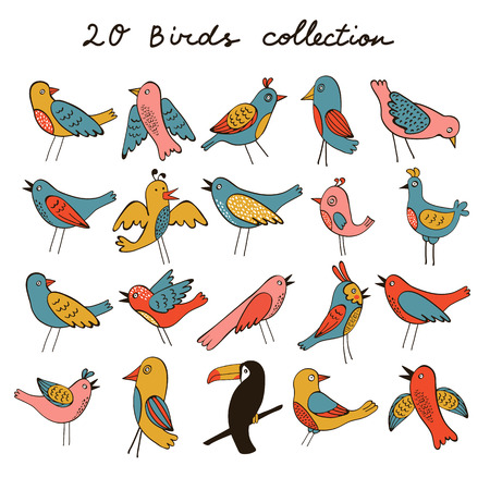 illustration collection: PrintCute collection of funny birds. vector illustration