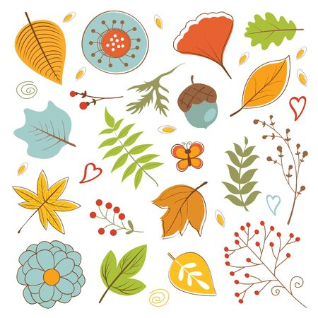 foliage: Autumn foliage set with twigs, flowers and leaves. vector illustration