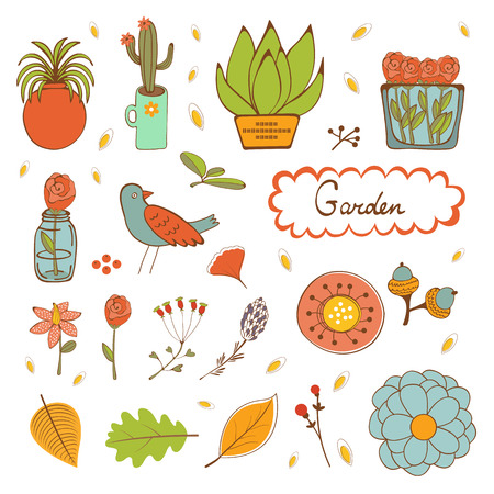 houseplants: Beautiful set of hand drawn houseplants flowers  twigs and birds. vector illustration