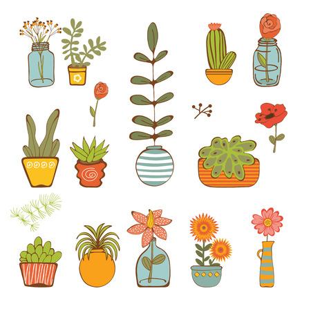 houseplant: Beautiful set of hand drawn houseplants. vector illustration