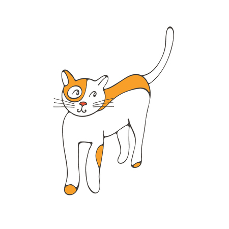 wiskers: Hand drawn illustration of cute domestic cat in vector format