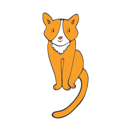 purring: Hand drawn illustration of cute domestic cat in vector format
