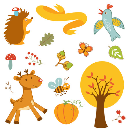 animals collection: Cute forest animals colorful collection. Illustration in vector format